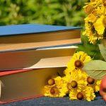 livre boite partage lire