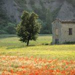 drome tourisme slow vigne nature patrimoine